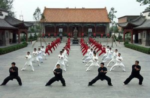 Confucius Institute: Chenjiagou (Chen village)