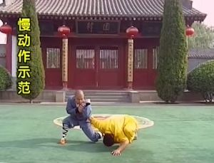 Qin na