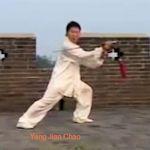 Yang Jian Chao