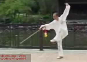 Standardized Wudang Sword 49-step Master Liang
