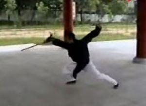 Wudang Kungfu Academy China demo