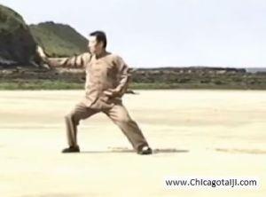 Chen Xiaowang demonstrates Xinjia Erlu