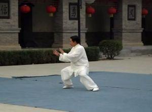 Chen Xiaoxing at Chenjiagou Temple 2006