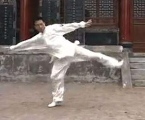 zuochong