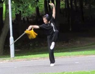 Master Faye Li Yip
