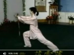 Excellent video of 56-sword; Qi Shi.
