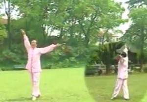Performance of Yi Jian Mei