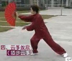 Kai Bu Yun Shou (Fan II)